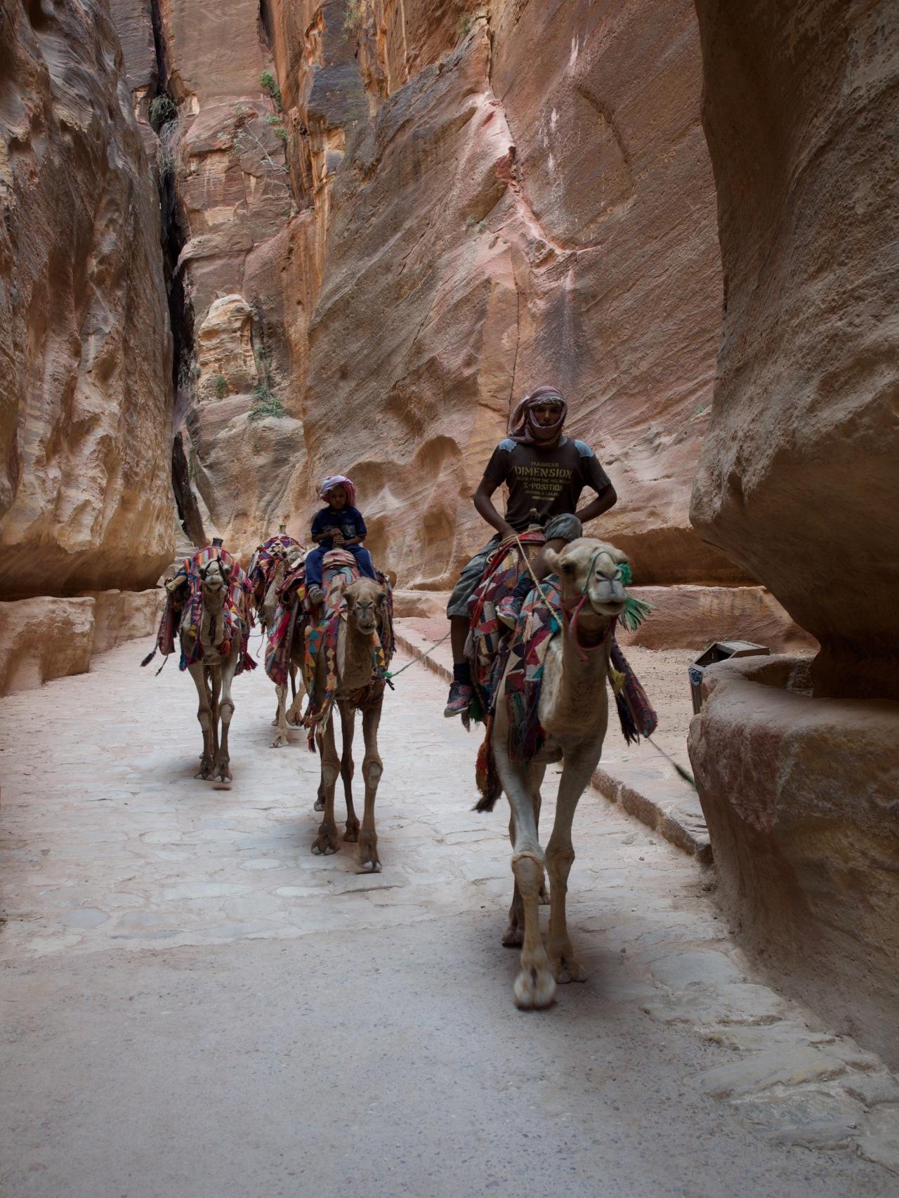Nos photos de laJordanie